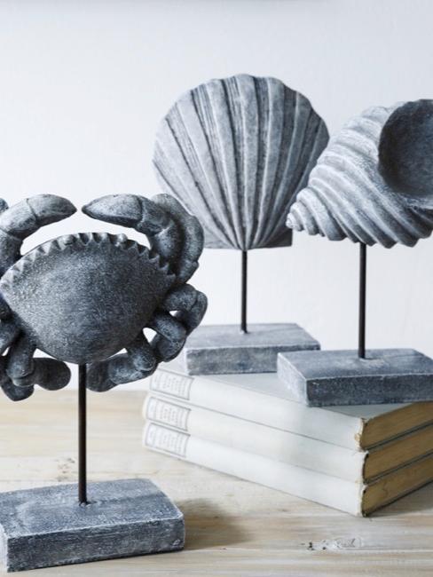 cangrejo y conchas como piezas decorativas