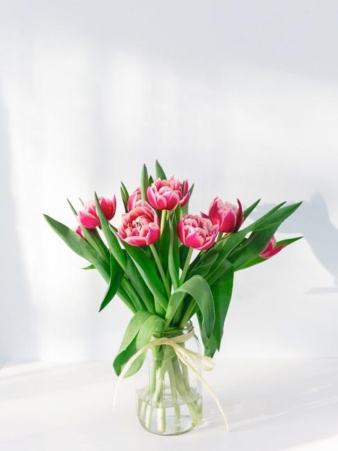 Roze tulpen in glazen vaas