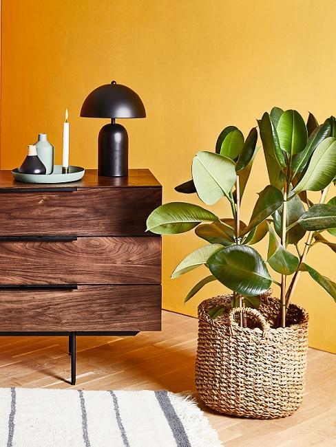 Wandfarbe Gelb hinter Sideboard und Pflanze