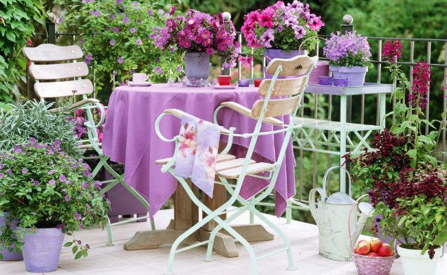 Kolorowy ogród na balkonie