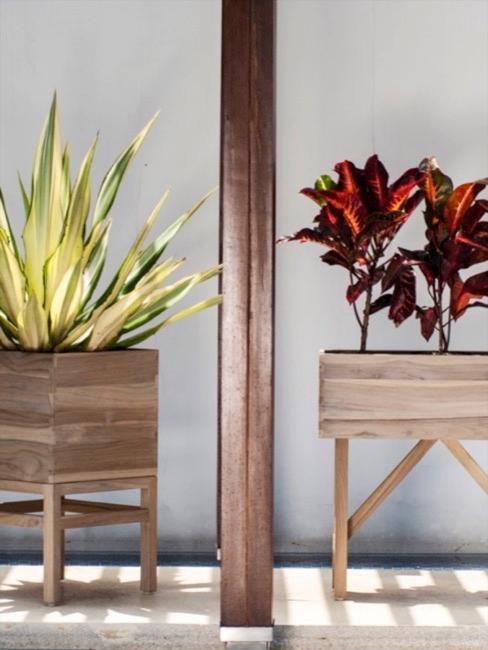Twee bloempotten van hout waarvan 'e'en een groene plant heeft en de andere een rode plant