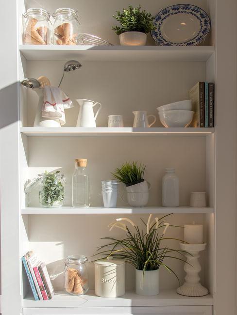 Estanterías de la cocina organizadas por estante