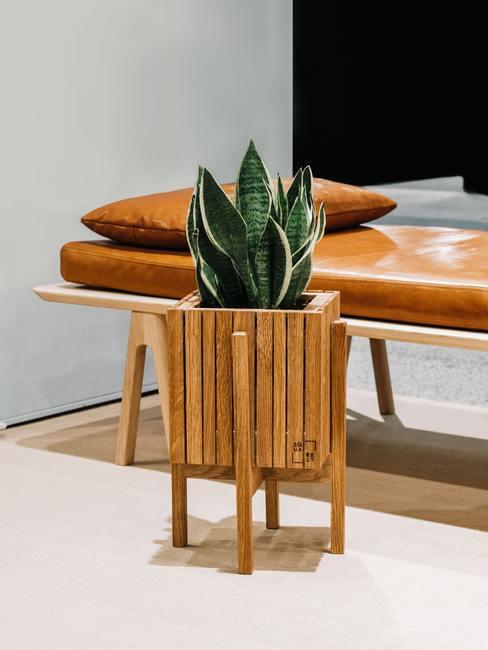 Potplanten in houten pot met leren bank