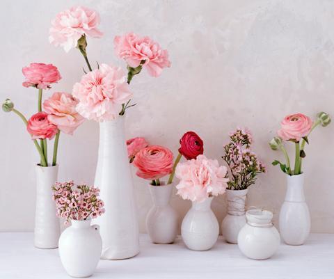 Die schönsten Blumen-Kombis im Frühling