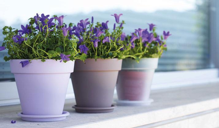 Artevasi Blumentöpfe rund