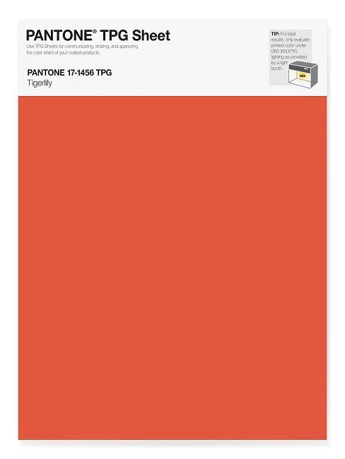 Pantone Trendfarbe Tigerlily