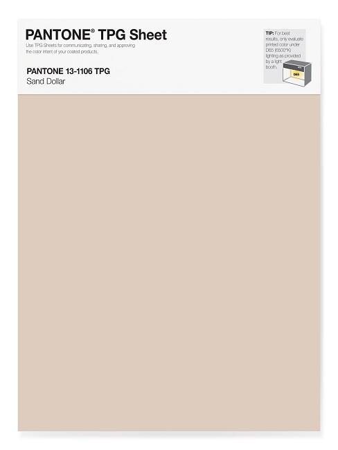 Pantone Trendfarben Sand Dollar