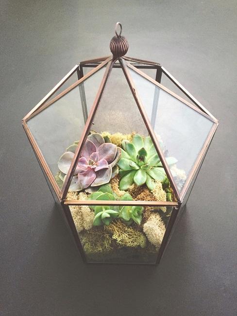 Laterne frühlingshaft mit Pflanzen dekoriert