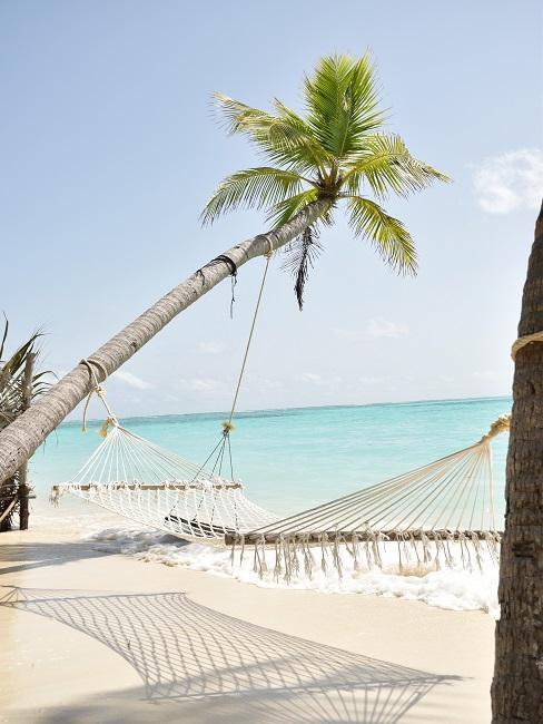 Macrame hammock on palm trees on the beach