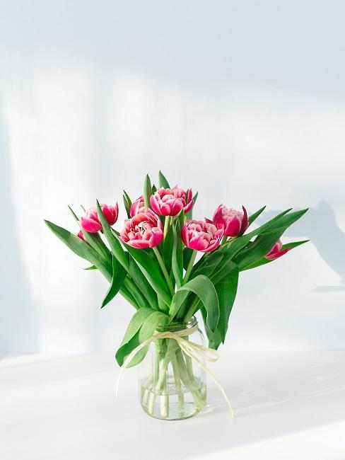 Pink tulip bouquet in a glass vase with a bow