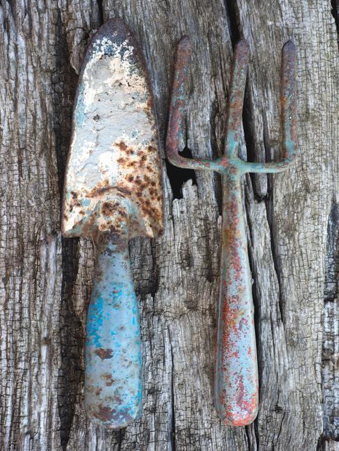 Herramientas de metal oxidado para jardín sobre una mesa de madera usada