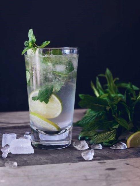 acqua detox limone melissa