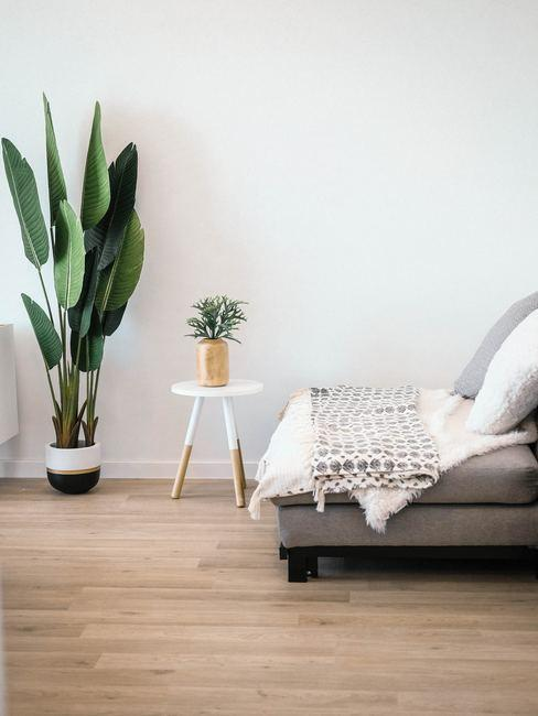 witte muur met bank, krukje en plant