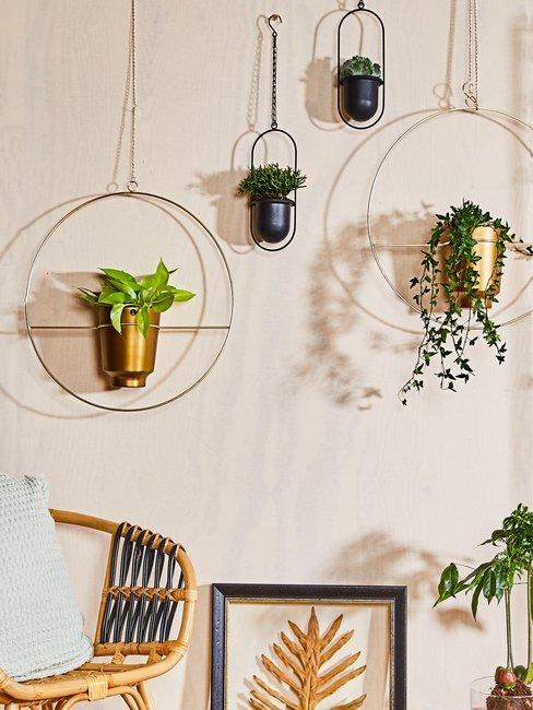 Jungle behang planten