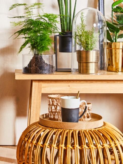 Planten op houten tafel