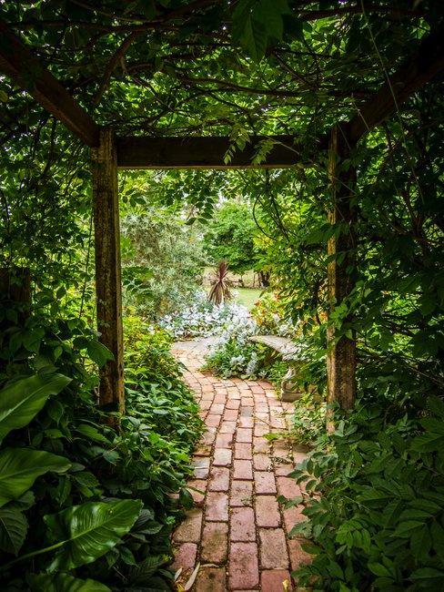 Urban garden pergola met planten begroeid boven een stenen pad