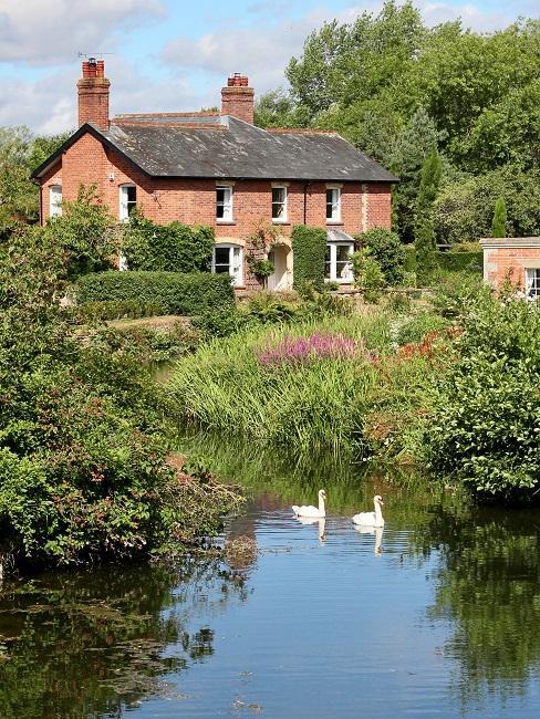Landelijk huis in de natuur met rievier en twee zwanen