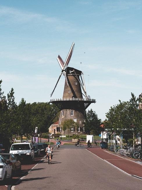Fietsvakantie fietser met oude windmolen op de achtergrond