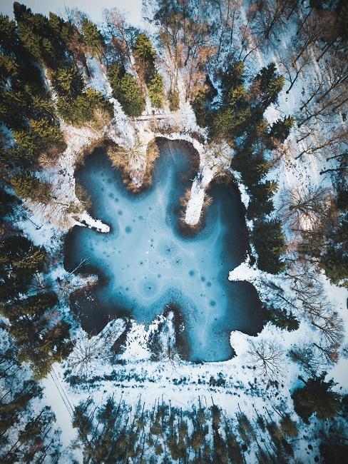Natuurgebied Nederland bovenaanzicht meer in bos in winter