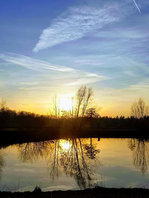 Natuurgebied Nederland vijver bij zonsondergang