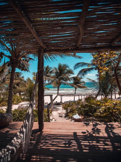 Trouwen in het buitenland uitzicht op de palmboom uit het zomerhuisje