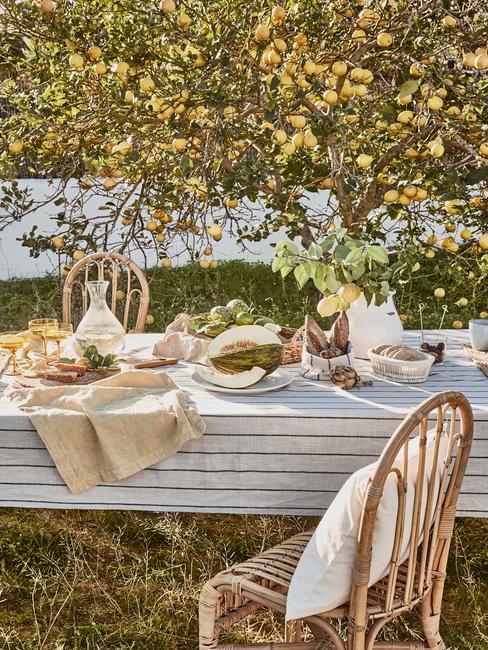 Zastawiony stół z zastawą kuchenną oraz jedzeniem pod drzewem owocowym