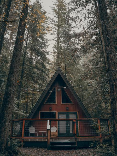 Mahoniowy dom w lesie