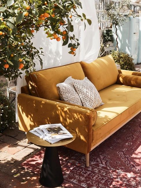 Sofa und Beistelltisch im Wintergarten umgeben von Pflanzen