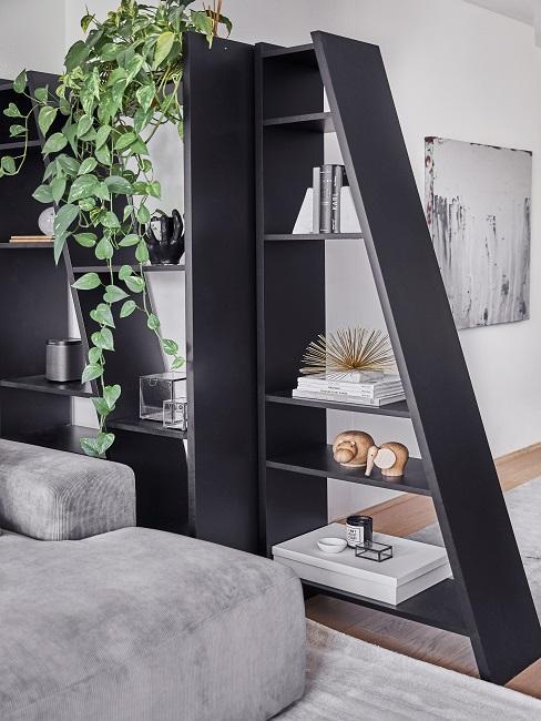 Pflegeleichte Zimmerpflanzen Efeutute über schwarzem Regal