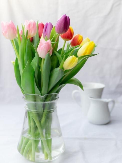Bunter Tulpenbund in Glasvase auf Esstisch