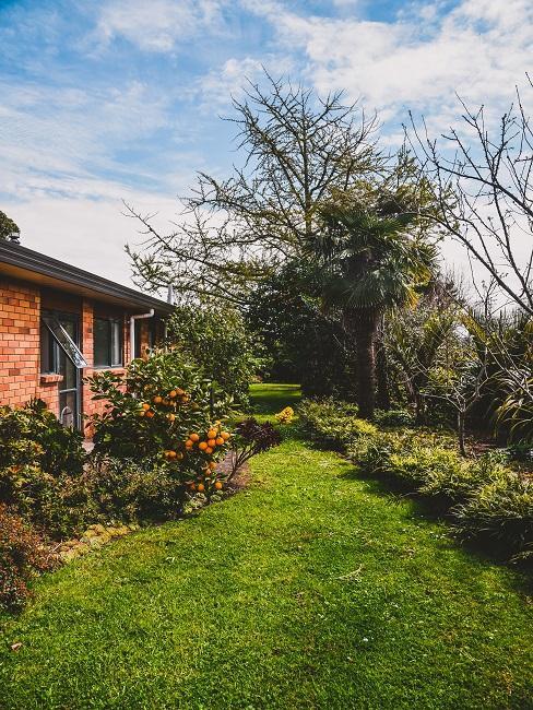 Stenen tuinhuis met gras en bomen