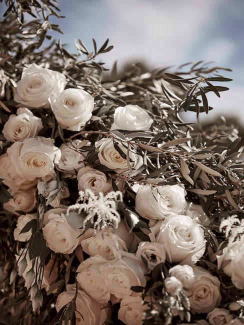 Witte rozen als bruiloftdecoratie