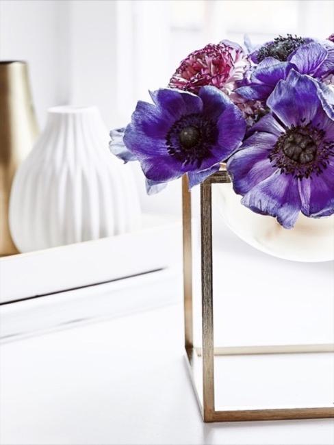Flores de color ultraviolea en jarrón transparente con fondo blanco