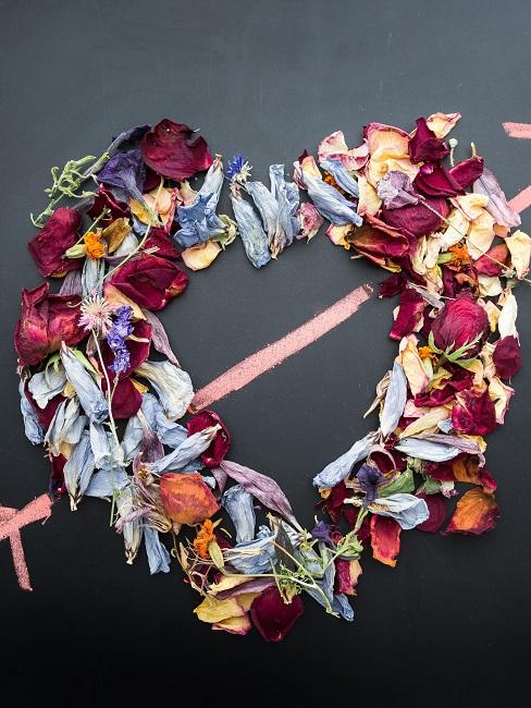 Heart made from dried rose petals