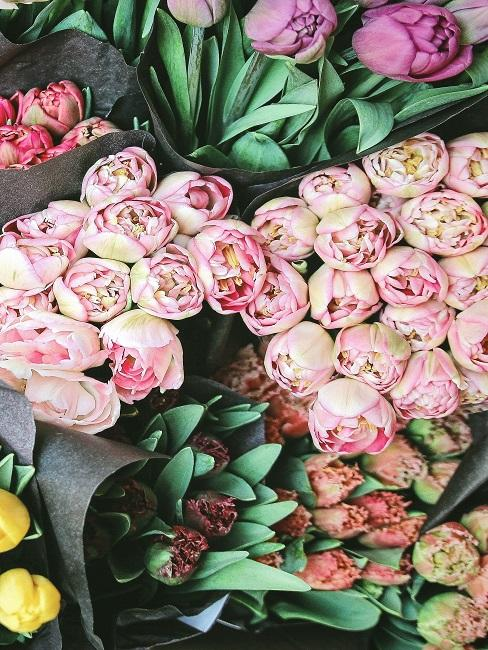 Colorful bouquets of tulips
