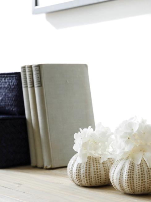un estante con libros y corales como decoración