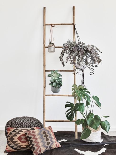 Dekoracyjna drabinka z bambusa oraz zawieszone na niej kwiaty