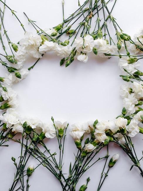 Einzelne weiße Blümchen zu einer Kreisform aneinander gelegt