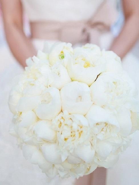 gros plan du bouquet de la mariée composé des fleurs blanches
