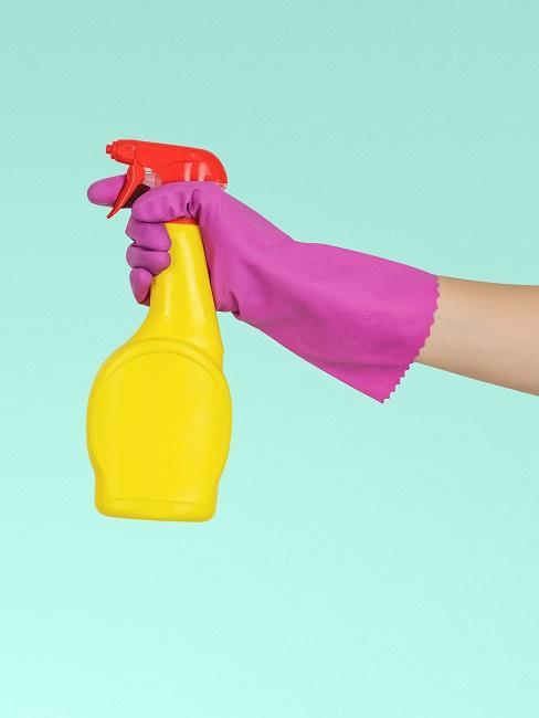 Gelbe Reinigungs-Sprühflasche vor türkisem Hintergrund, von einer Frau gehalten mit lila Putzhandschuhen