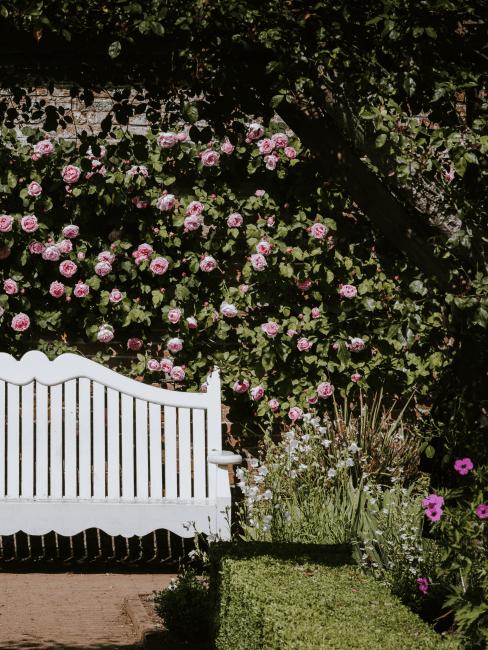 banco blanco de madera para jardín
