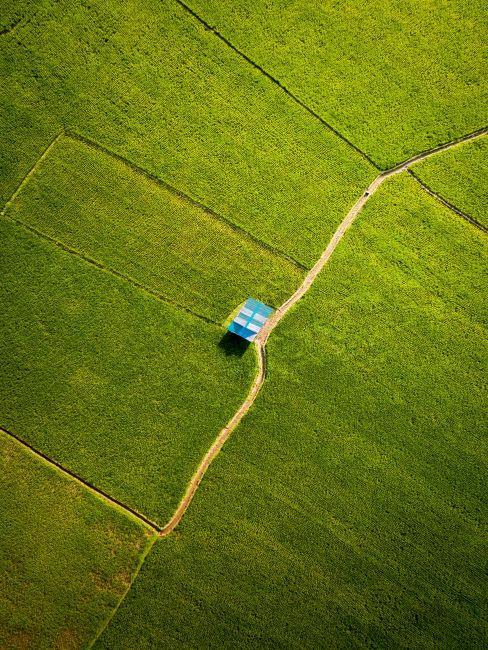 Maison à toit bleu dans un champ vert