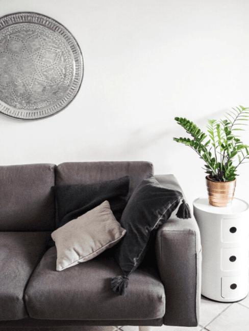 divano grigio con tavolino e pianta