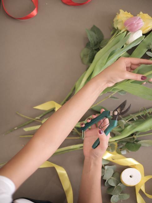 Tulpen snijden