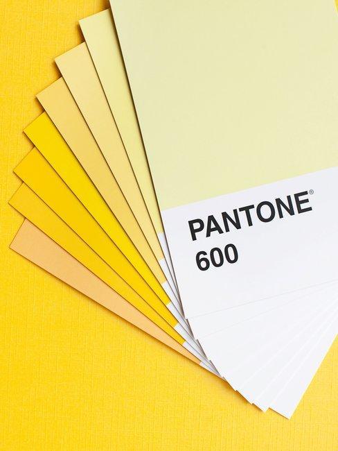 Waaier gele kleuren op gele achtergrond