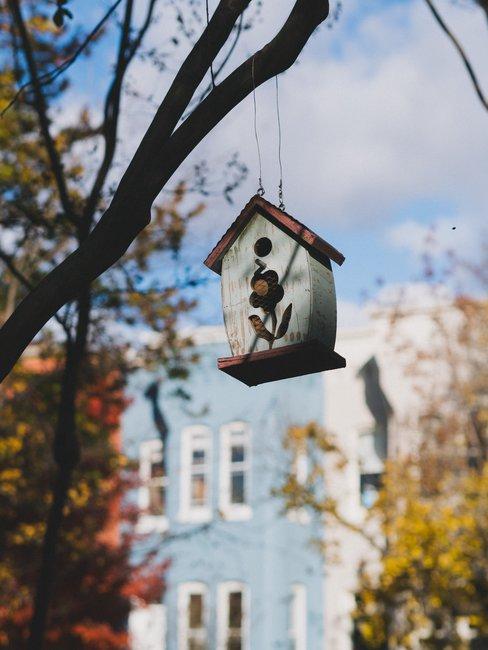 Wit vogelhuisje aan boom zonder bladeren met huis op de achtergrond