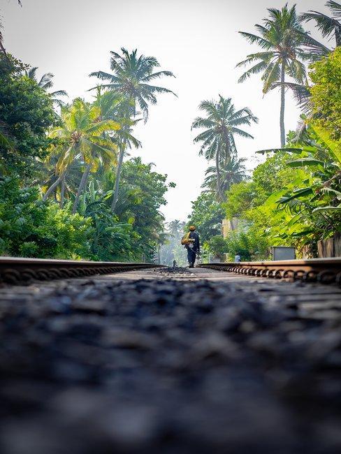 Man loopt over een oude treinrails in jungle omgeving