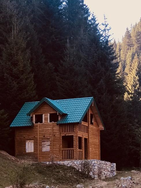 Houten huis met twee verdiepingen en groen pannendak in bosrijke omgeving