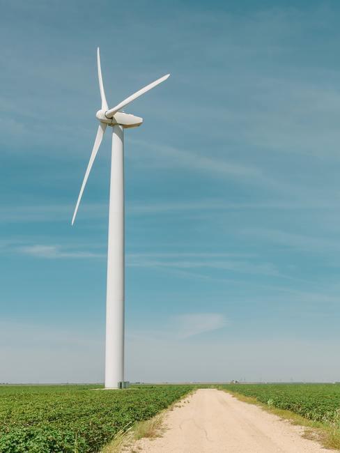Windmolen in groen veld