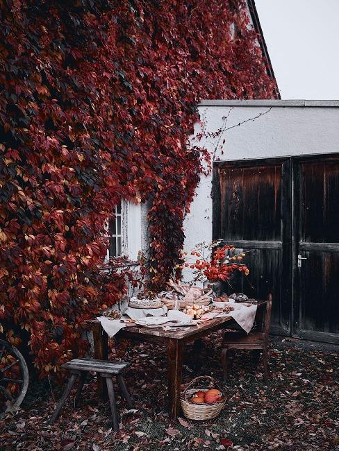 Garage met klimop tegen de muur gegroeid